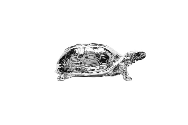 Reality Turtle Box in chrome by Harry Allen for Areaware | 