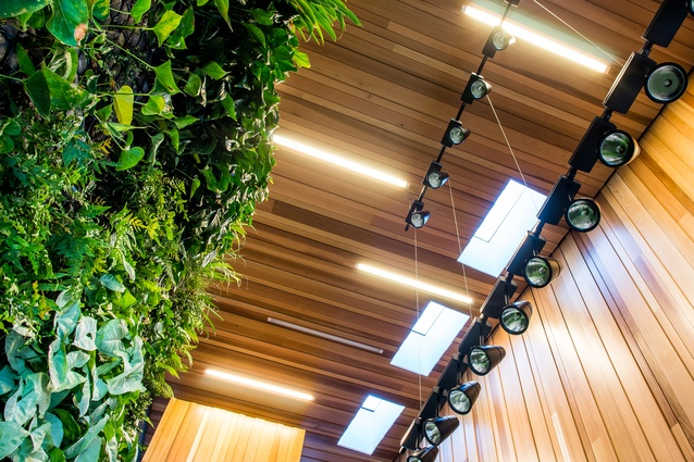The interior boasts a large green wall and various skylights.
