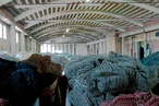 From fishing nets to carpets