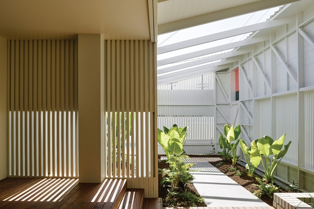 """Behind the front facade is a pathway or """"garden room"""" lined with greenery and open to the sky."""
