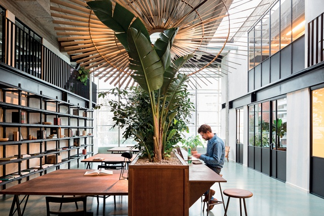 With a modest budget of under $500 per m2 the designers have created several flexible work and meeting areas with simple materials, plants, stained plywood and second-hand furniture.